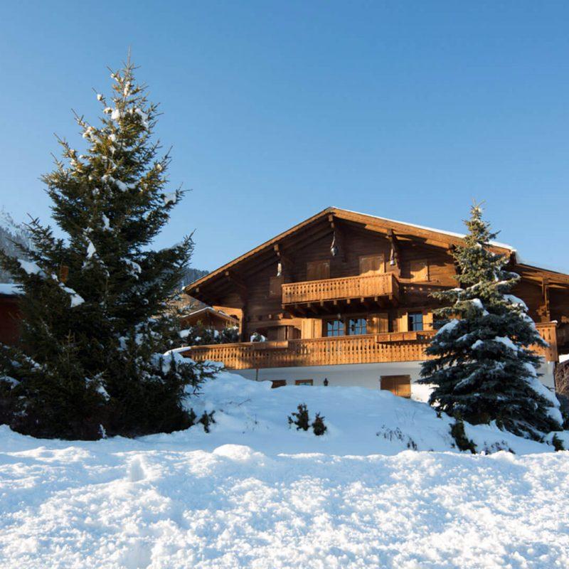 Swiss Alps Chalet